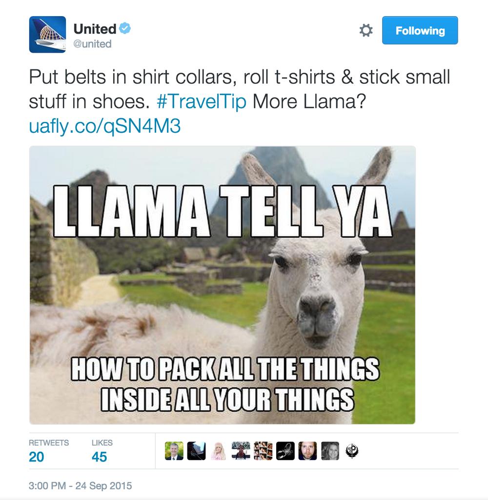 llama tell ya twitter.png