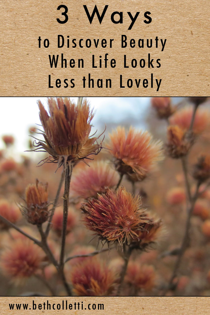 3 Ways to Discover Beauty When Life Looks Less than Lovely