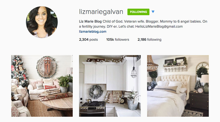 Liz Marie Blog Instagram Feed