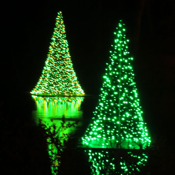 Lights displayed in the catfish pond reflect on the water.