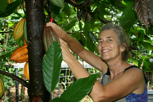 5-lucy-picking-cacao-pods.png