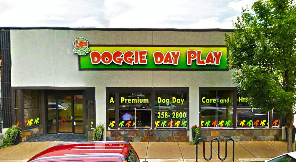 DOGGIE DAY PLAY  1135 CHICAGO AVE., OAK PARK, IL