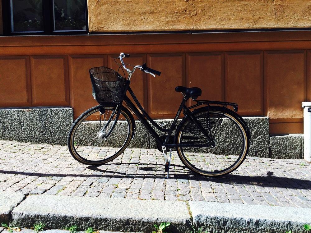 My new bike! She needs a name...