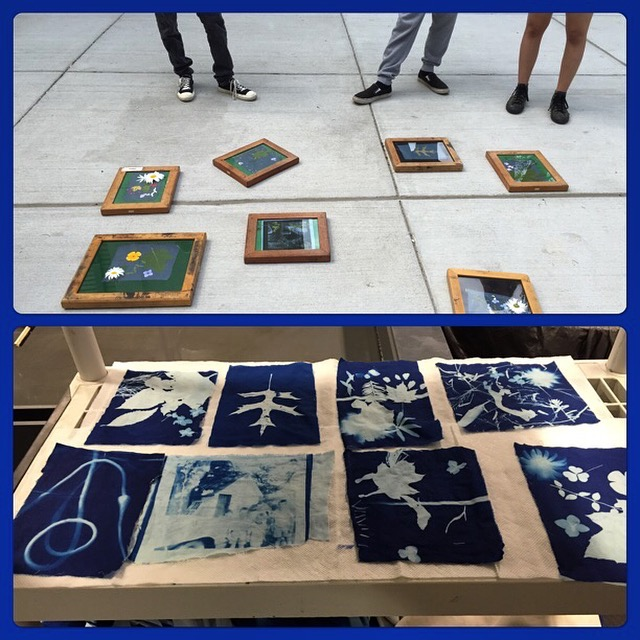 makingcyanotypes.jpg