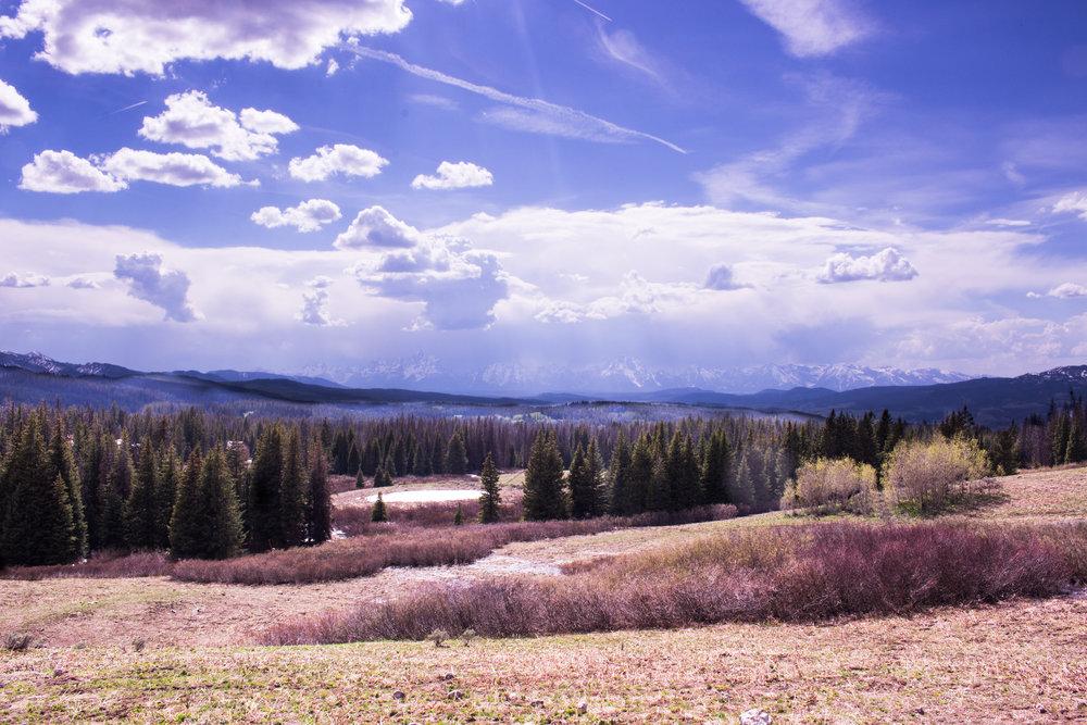 Yellowstone-140.jpg