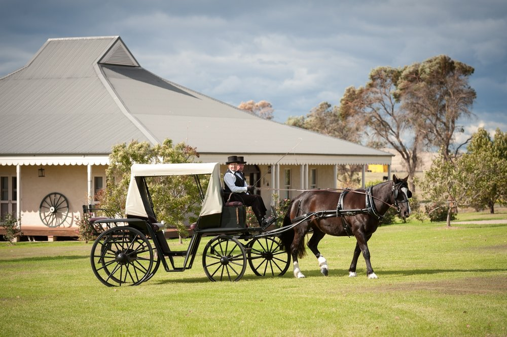 Horse and Carriage, Hunter Valley Weddings.
