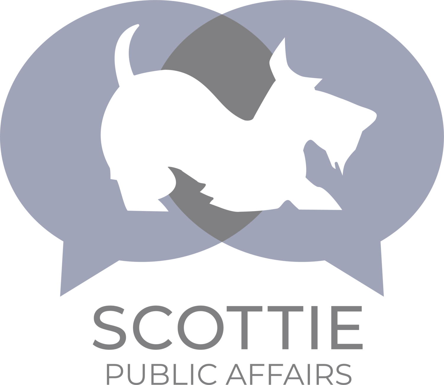 Scottie Public Affairs