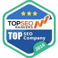 topseorankers Top SEO company 2016