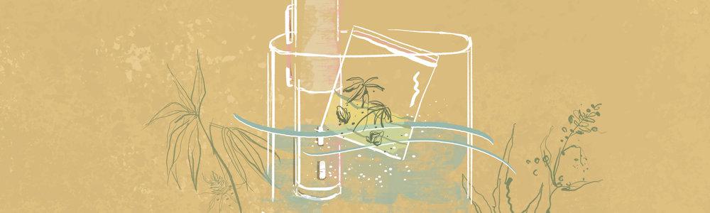 SousWeed_Illustrations_Header1.jpg