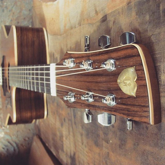 Steel string with cutaway,  Cedar and Rosewood. Custom made in Wellington  #acousticguitarwellington #steelstringacoustic #customguitarnewzealand #customacoustic #guitarmakingcourse #wellingtonnz #headstockbinding