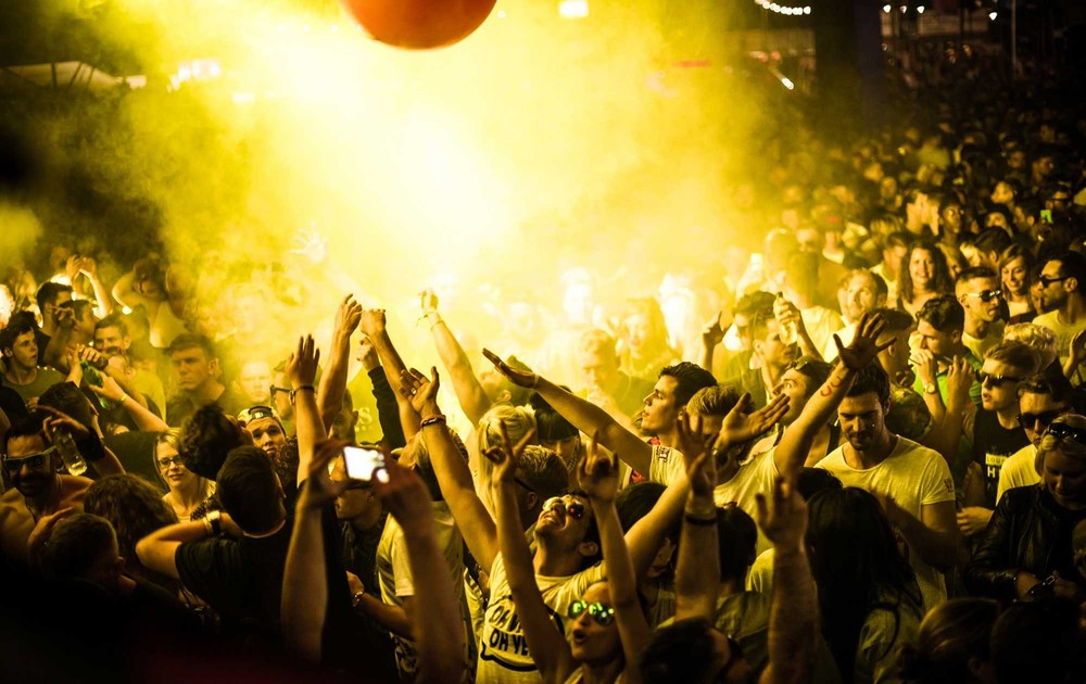 Thesocialfestival