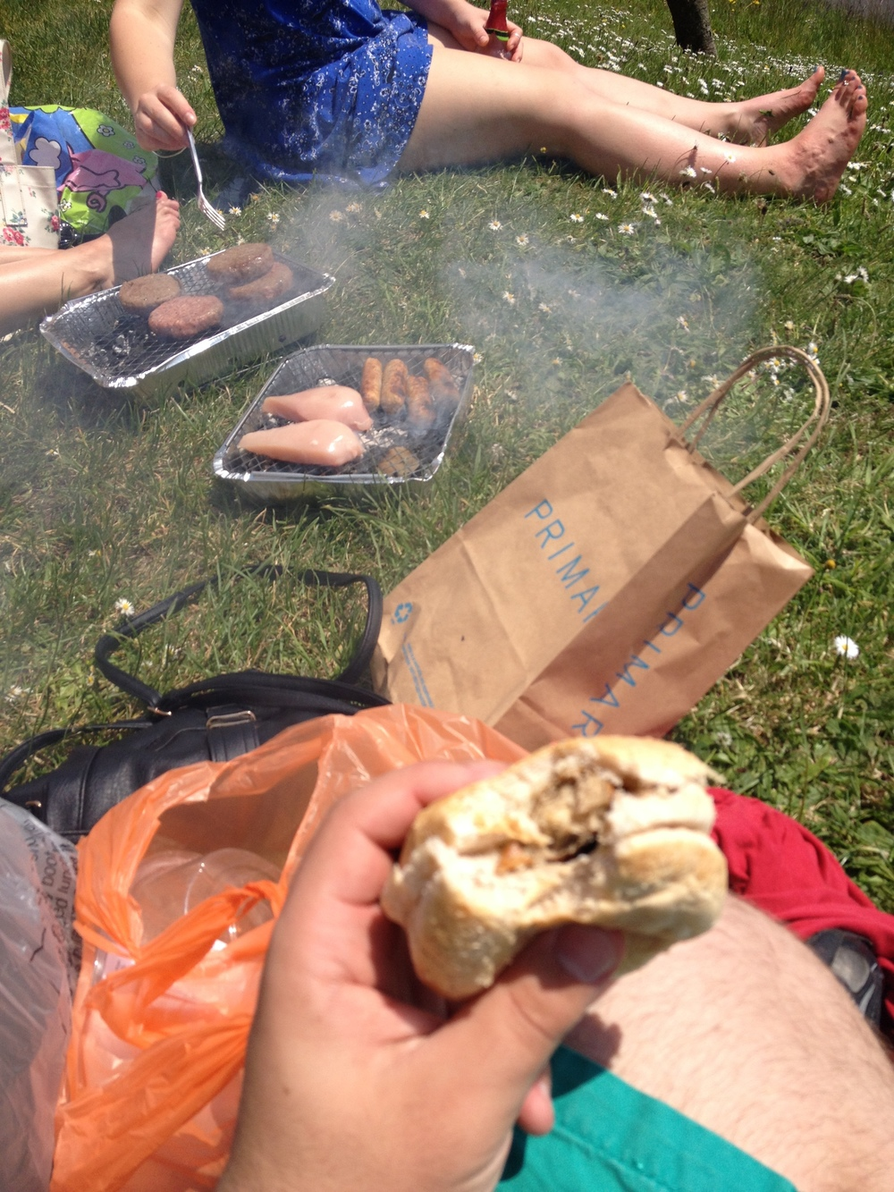A bbq with friends is a good motivation to revise!