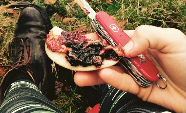 Peanut butter and jam on apples is just as tasty in the woods.