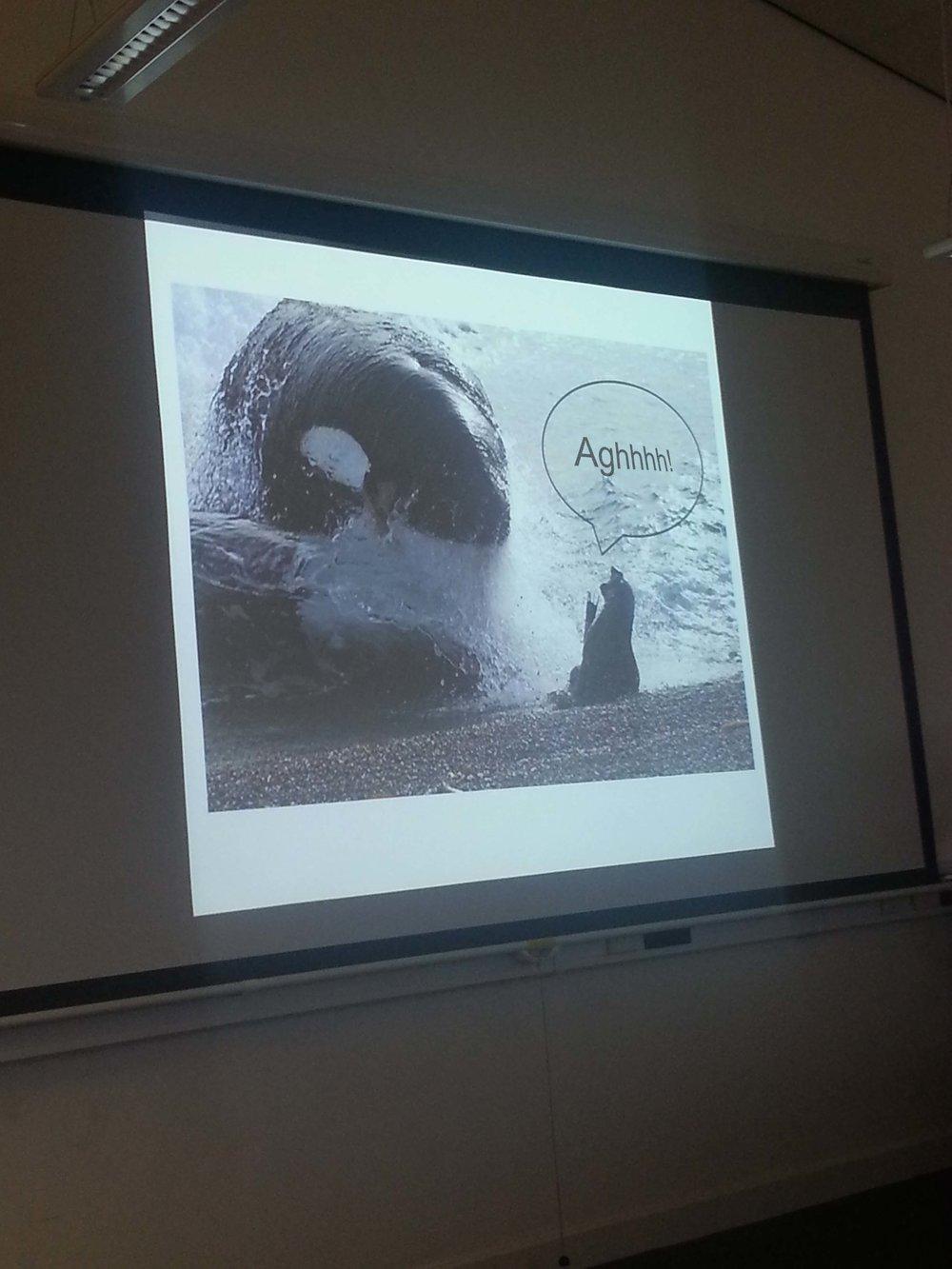Lecture fun