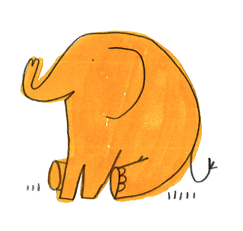 A Port Eliot Elephant.jpg