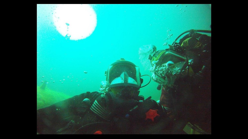 'An excitable 'diving-selfie'