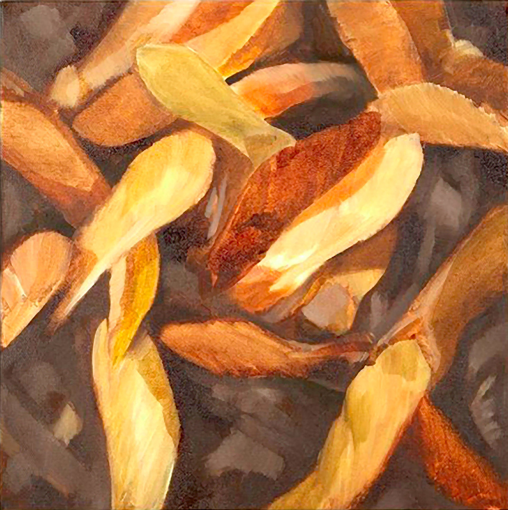 SYCAMORE SEEDS Oil on canvas, 35cm x 35cm Available to buy, please contact me.