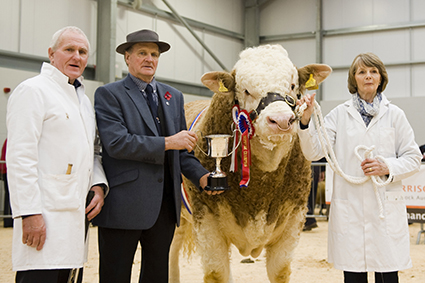 (Lot 9) Male & Supreme Champion Presentation.JPG