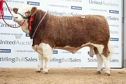 Annick Capercaillie - 16,000gns