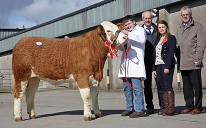 Craig Cowan, Brookeborough, exhibited the reserve female champion Owenskerry Chaz which sold at 2,800gns. Included are Nigel Glasgow, chairman, NI Simmental Club; Zara Stubbs, Irvinestown, judge; and John Henning, head of agricultural relations, Danske Bank.