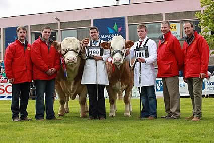 The team from the Bruces Hill Cattle Company, Templepatrick, pictured with their first prize winning pair of Simmentals at Balmoral Show.