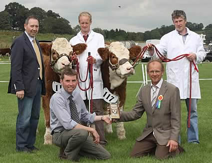 The 2011 Ivomec Super Simmental Pair of the Year were Omorga Bambi and Omorga Saffron 2nd owned by John Moore, Beragh, who was congratulated by judge, Keith Vickery. Looking on are Pat Kelly, club chairman, and handlers Moses Irwin and Gavin Aiken.