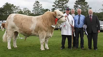 The Male of the Year 2011 was Ranfurly Barrister bred by David Hazelton, Dungannon. Pictured at the presentation are club vice-chairman, Nigel Glasgow, vice-chairman, with John Henning, head of agriculture, and Trevor Johnston, Northern Bank, sponsors.