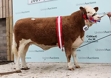 The In-calf Corskie Valerie lifted the female championship for Messrs. W. J. and J. Green, Fochabers, Morayshire.