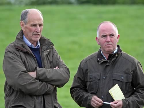 Sean Burns, Rathfriland, and Chris Traynor, Armagh, were among the competitors at the NI Simmental Club's annual stockjudging competition, held at Portglenone.
