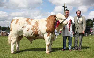 The male and reserve supreme Simmental champion at Ballymoney Show was Slievenagh Wyatt, bred by Robin Boyd, Portglenone. Adding his congratulations is judge, Kenneth Stubbs, Irvinestown.