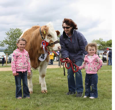 Sisters Shannon and Jessica Stewart, and mum, Yvonna, from Ballymoney, pictured with Ranfurly Weikel 3rd, the Simmental champion owned by David Hazelton, Dungannon.