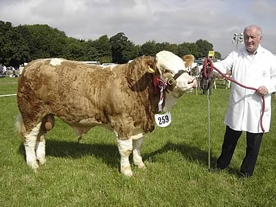 David Hazelton's supreme champion, Ranfurly Volvo.
