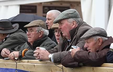 Keeping an eye on the Simmental judging at Balmoral Show.