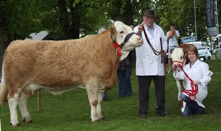 Reserve female champion was Jim Hamilton's Slatequarry Prince Diana.