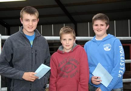 Taking part in the NI Simmental Club's junior stockjudging competition are brothers Kyle, Sam and James Hayes, Upper Ballinderry.