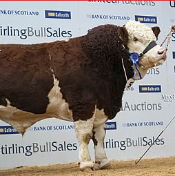 kilbride_farm_double_action_18000gns feature