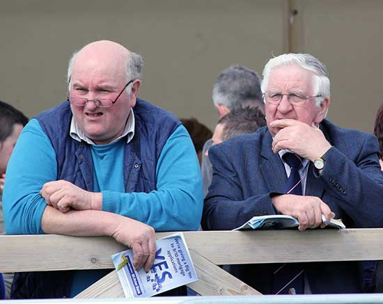 Simmental breeders Jim Hamilton, Rock, Dungannon; and Cecil McIlwaine, Newtownstewart, keep an eye on the judging at Balmoral Show.