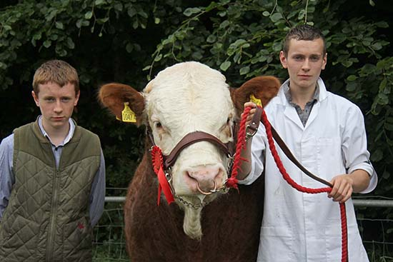 Brothers Darren and Adrian Carson from Garrison, County Fermanagh, with their male champion Simmental bull Gurteen Emperor at Armagh Show.