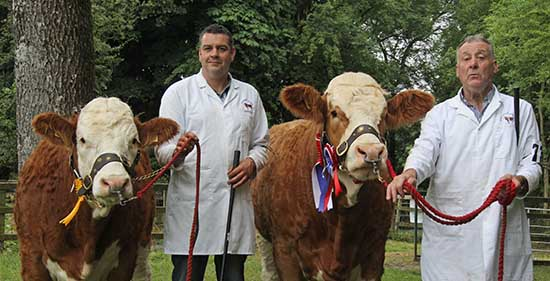 Clogher: Qualifiers were Drumacritten Dianna and Scribby Farms Daisy shown by Keith and William Nelson, Rosslea.