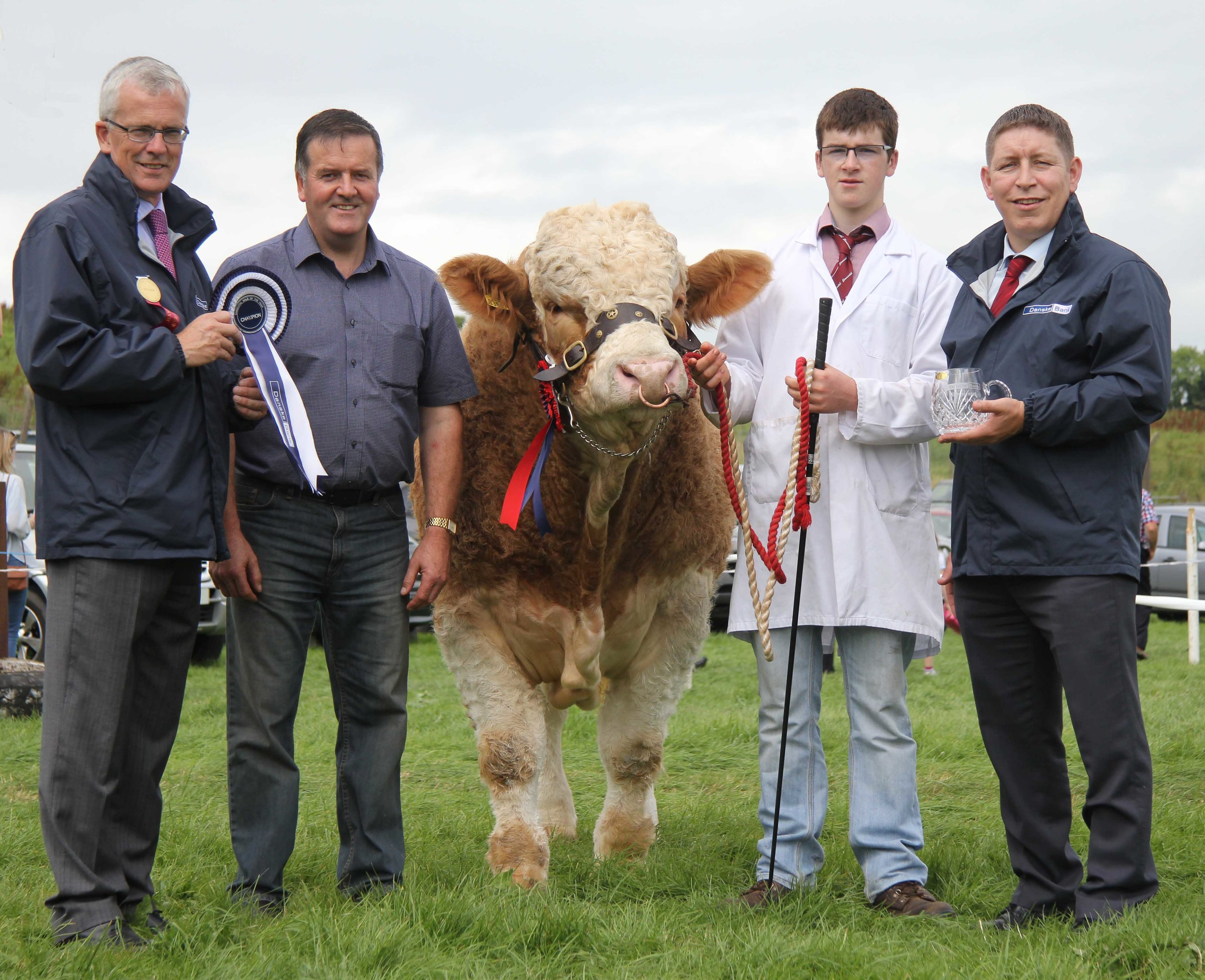 The Danske Bank Simmental Male of the Year award was won by Slievenagh Emperor bred by Robin Boyd, Portglenone, and shown by son Jamie. Making the presentation are sponsors John Henning and Rodney Brown, Danske Bank.