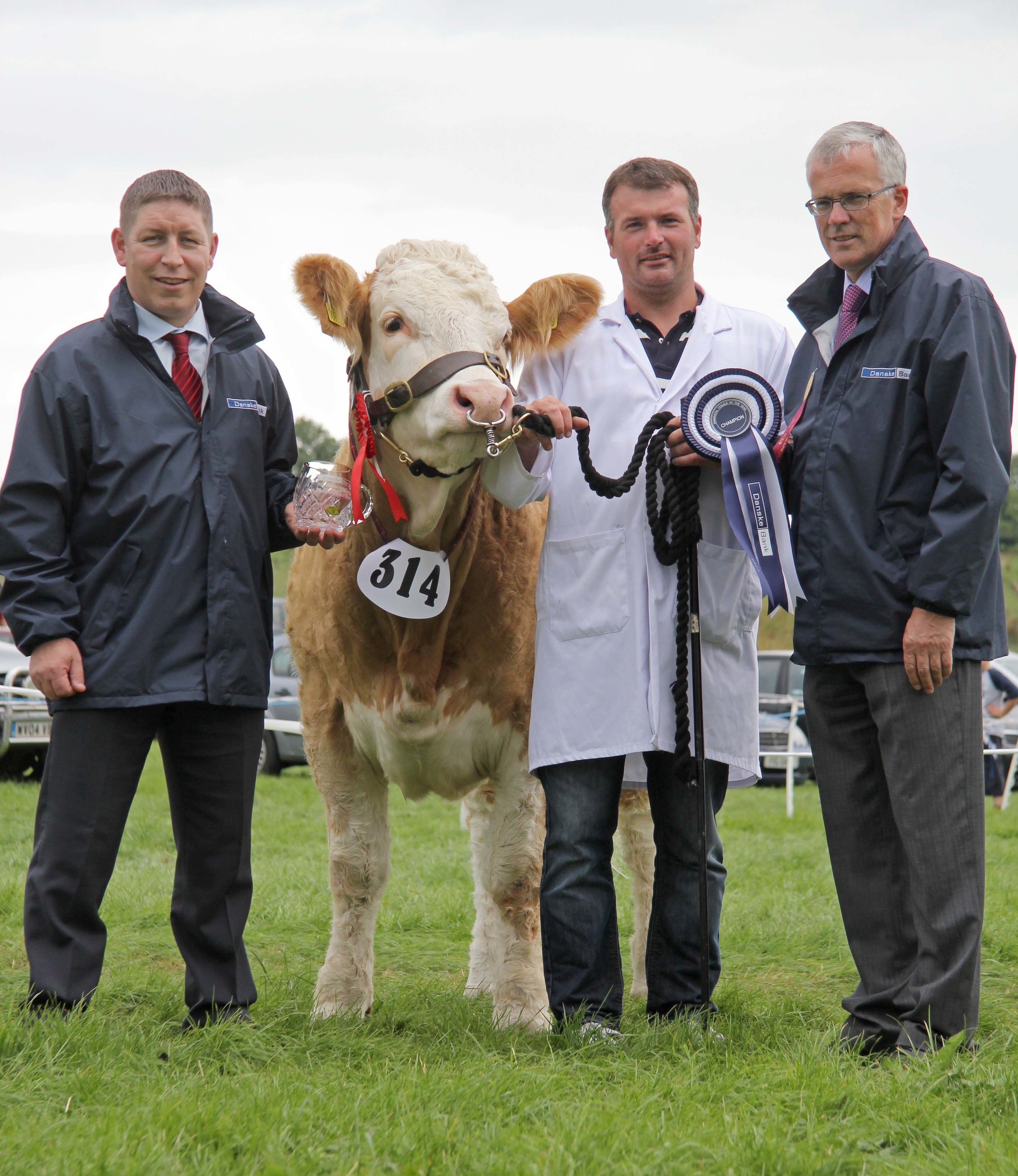 Danske Bank Simmental Female of the Year was Ballinlare Farm Empress shown by Alan Wilson, Newry. Pictured at the Enniskillen Show presentation are Rodney Brown and John Henning, Danske Bank, sponsors.