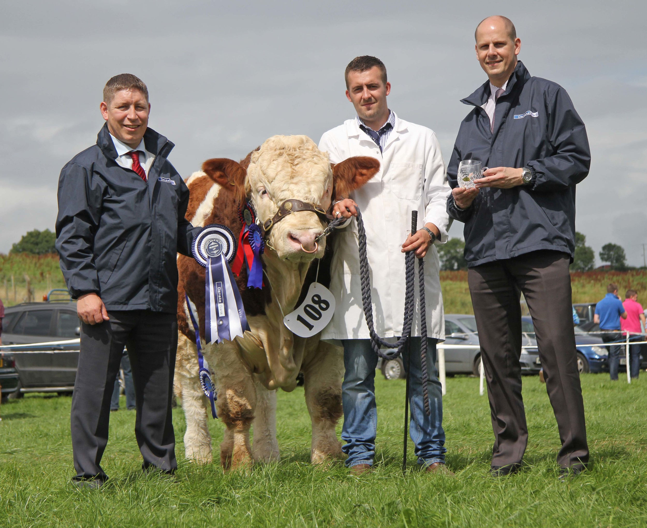 Danske Bank Reserve Simmental Male of the Year was Slievenagh Extra Special shown by Christopher Boyd, Portglenone. Adding their congratulations are Rodney Brown and Matthew Johnston, Danske Bank, sponsors.