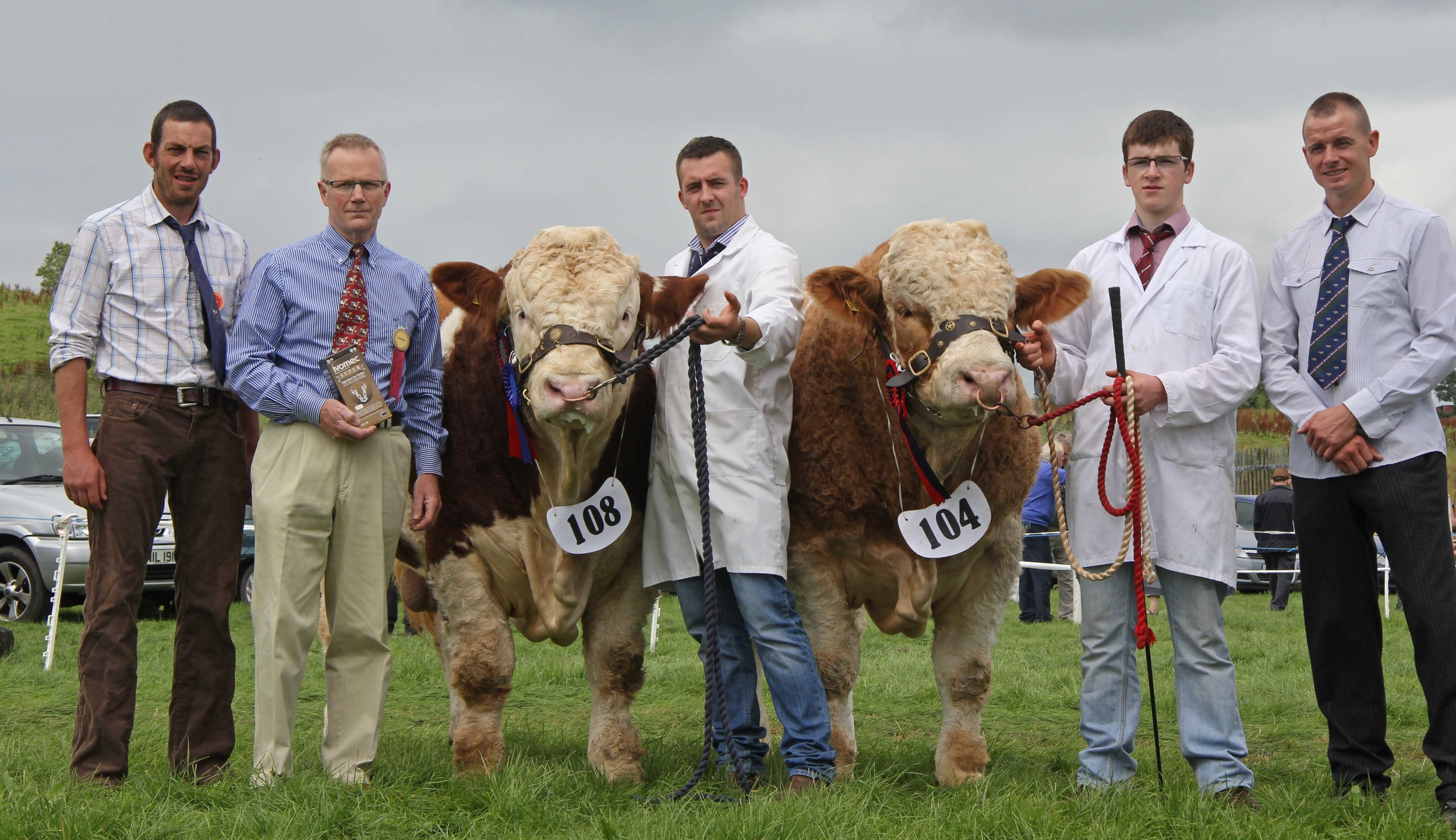Ivomec Super Simmental Pair of the Year winners were Slievenagh Emperor and Slievenagh Extra Special shown by Christopher and Jamie Boyd, Portglenone. Included are judge Garrett Behan, Portlaoise; Philip Clarke, Merial Animal Health, sponsor; and Richard Rodgers, chairman, NI Simmental Club.