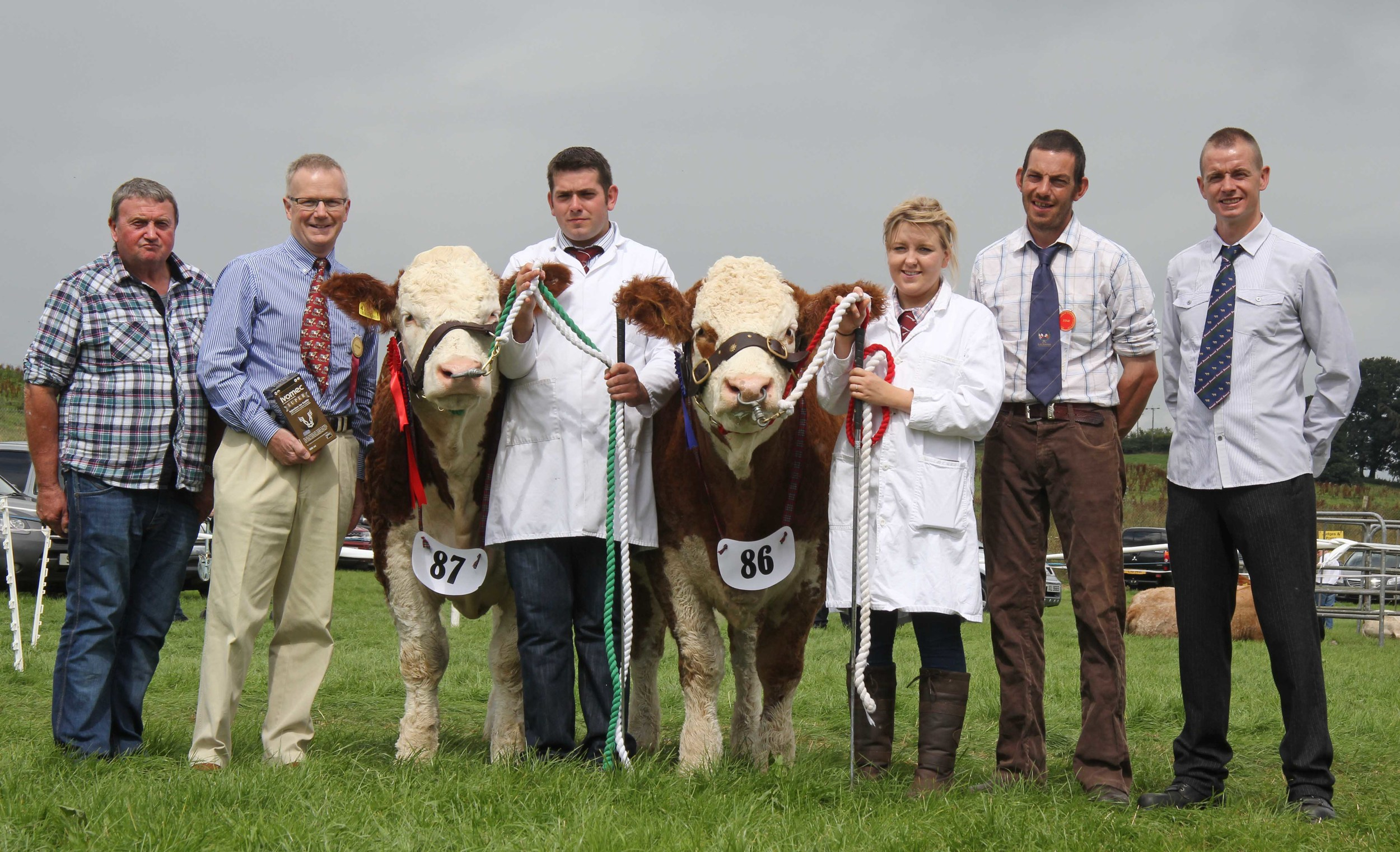 Ivomec Super Simmental Pair of the Year runners-up were Castlemount Bianca and Castlemount Modesty owned by Duncan McDowell, Newtownards, and shown by Richard McKeown and Fiona Sloan. Included are sponsor Philip Clarke, Merial Animal Health; judge Garrett Behan, Portlaoise; and NI Simmental Club chairman Richard Rodgers.