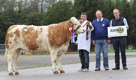 Alan Wilson, Newry, exhibited the reserve female champion Ballinlare Farm Dancer. Also pictured are judge Matthew Cunning, Glarryford; and sponsor Neil Acheson, Animax.
