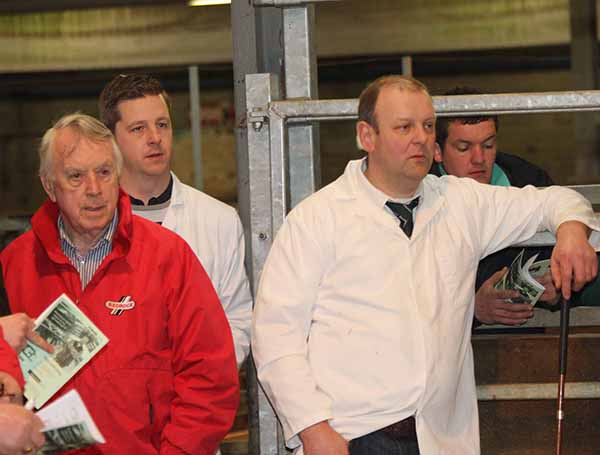Taking a keen interest in the judging at the NI Simmental Cattle Breeders' Club's Dungannon show and sale are, from left: Tom Bogue, Brookeborough; Neil McIlwaine, Newtownstewart; vice chairman Matthew Cunning, Glarryford; and William Ferguson, Stewartstown.
