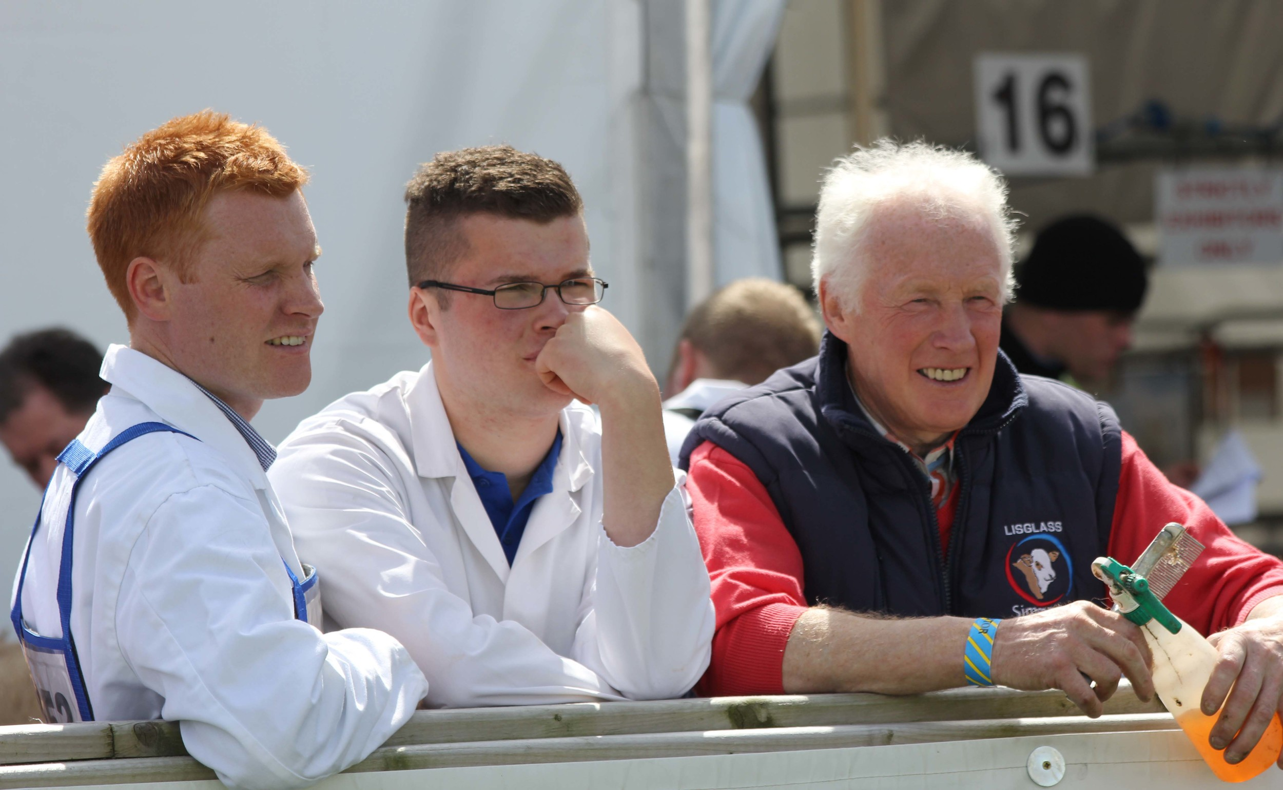 Deep in concentration during the Simmental judging at Balmoral Show are Christopher, James and Leslie Weatherup, Ballyclare.