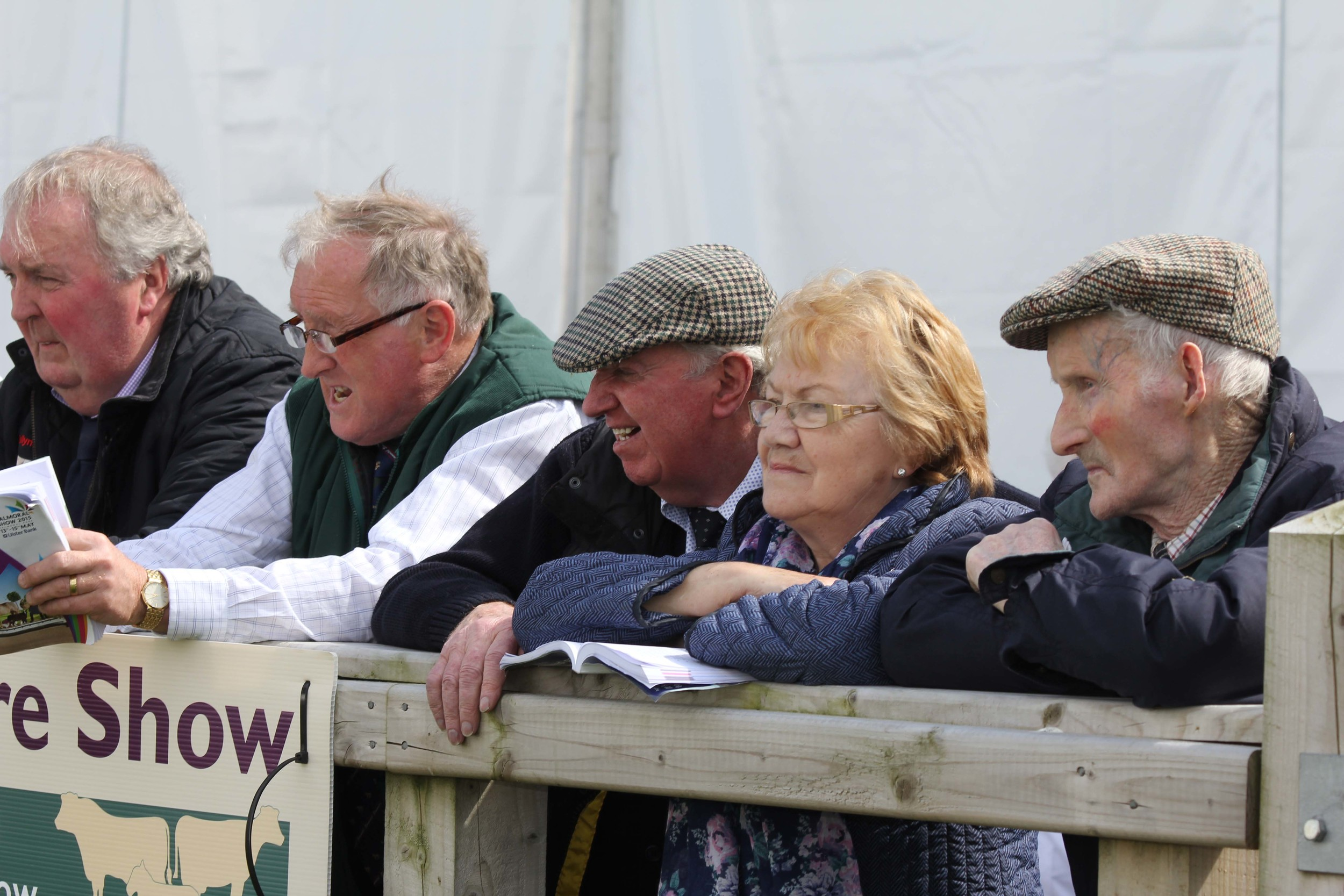 Spectators around the showring at Balmoral Show.