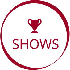 shows-new.png