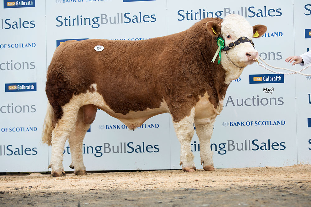 157-Knockreagh-Elvis-6000gns0033.jpg
